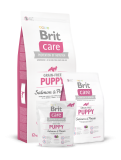 Brit Care Grain-free Puppy Salmon & Potato 2 x 12 kg