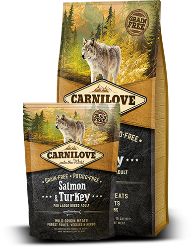 Carnilove Dog Salmon & Turkey for LB 12kg