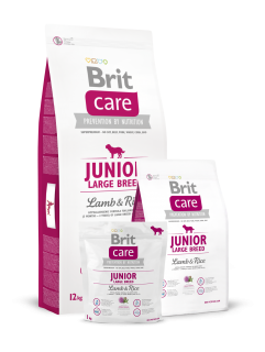 Brit Care Dog Junior Large Breed Lamb & Rice 2 x 12kg