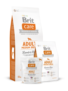 Brit Care Adult Medium Breed Lamb & Rice 2 x 12 kg