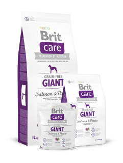 Brit Care Grain-free Giant Salmon & Potato 2 x 12 kg